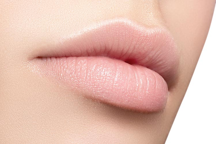 Perfect natural lip makeup. Close up macro photo with beautiful
